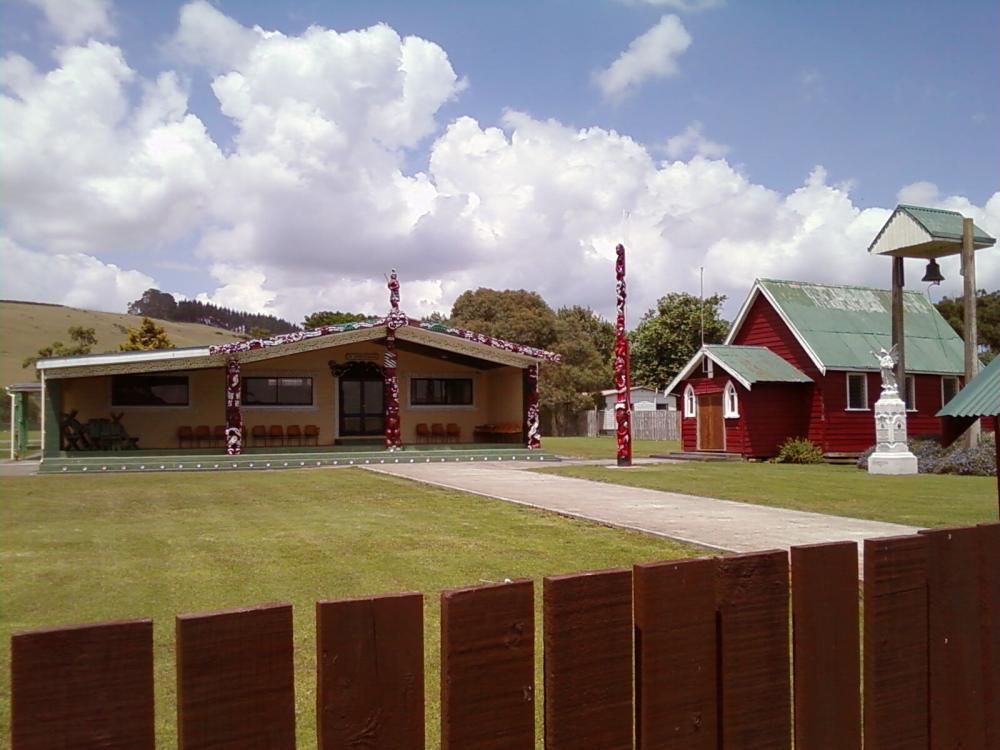 Read more about the article Te Kotahitanga